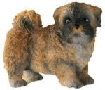 Dog Breed Statues - Llaso Apso Puppy