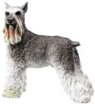 Dog Breed Statues - Schnauzer - Large